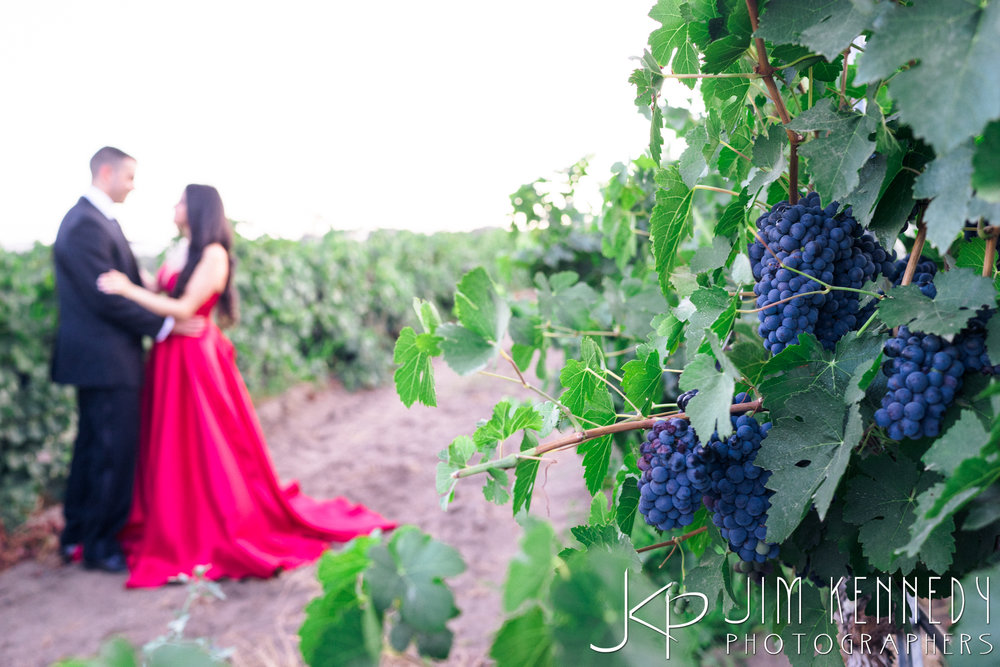 temecula-winery-engagement-session_-55.jpg
