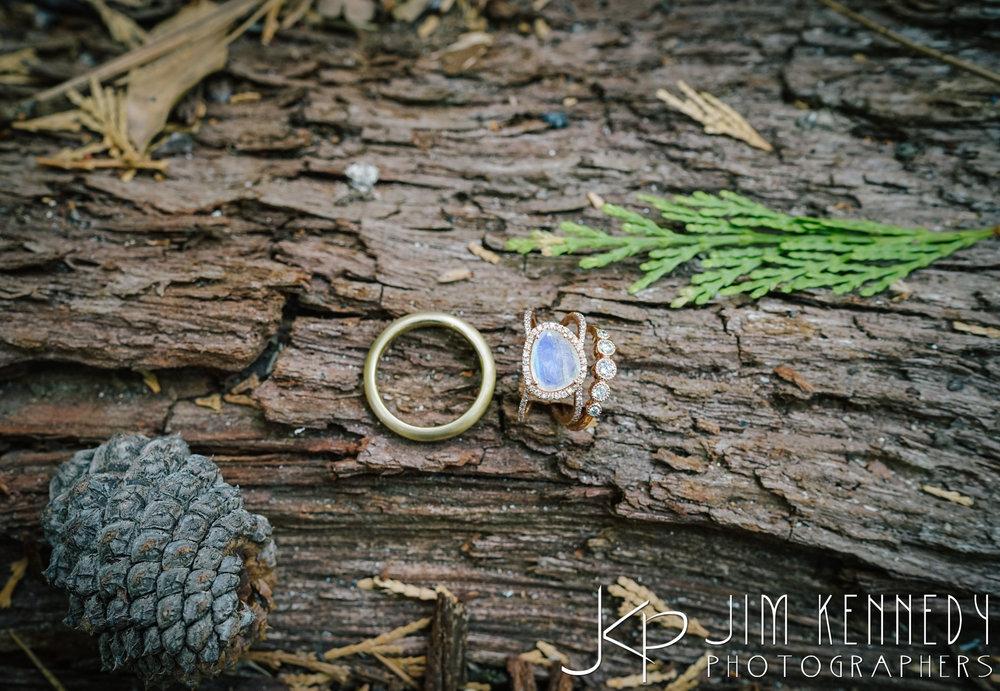 Yosemite-Wedding-Photos-0002.JPG