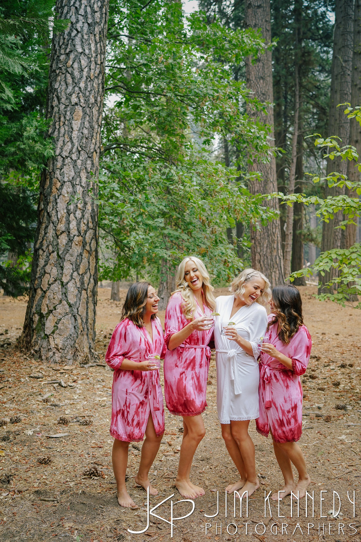 Yosemite-Wedding-Photos-0009.JPG