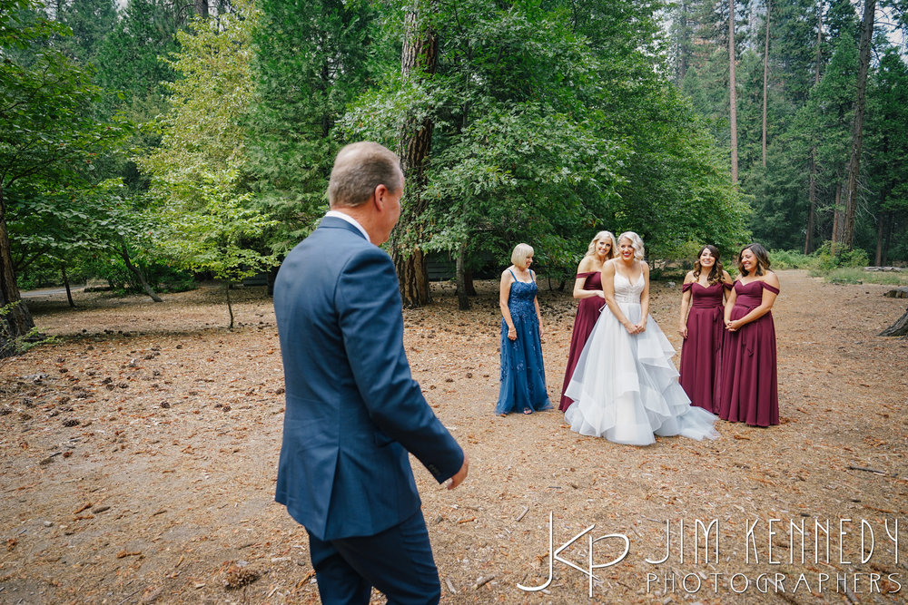 Yosemite-Wedding-Photos-0022.JPG