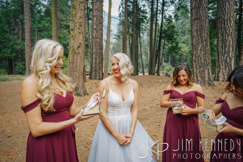 Yosemite-Wedding-Photos-0028.JPG
