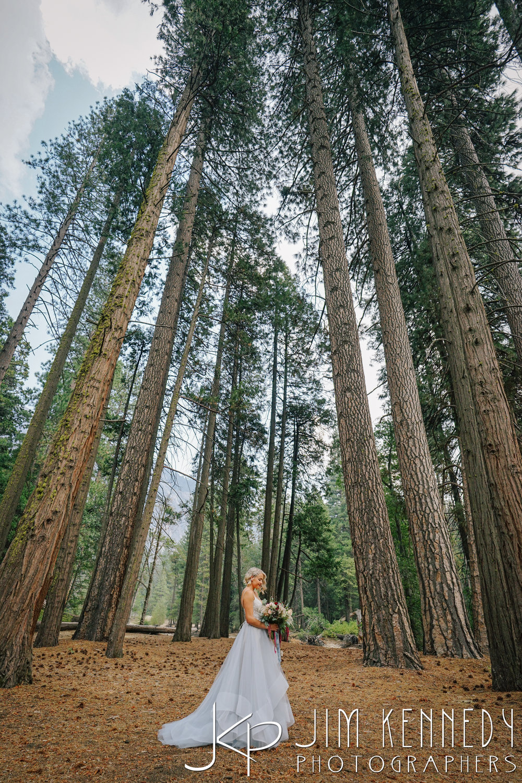 Yosemite-Wedding-Photos-0033.JPG