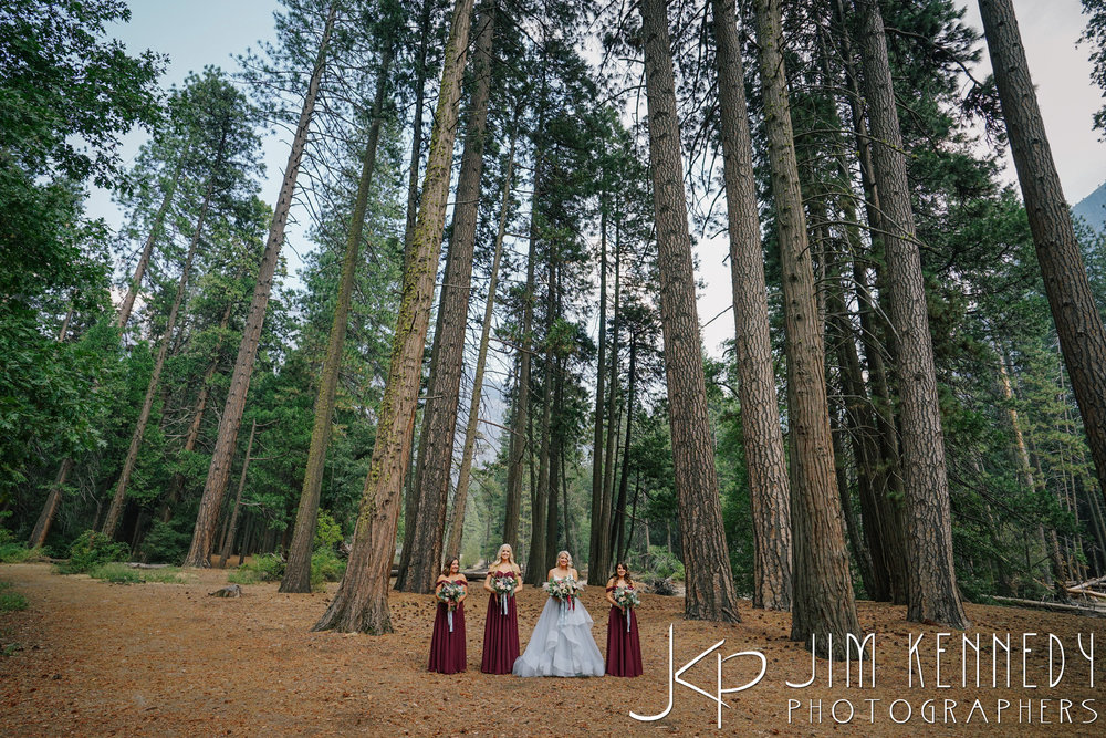 Yosemite-Wedding-Photos-0036.JPG