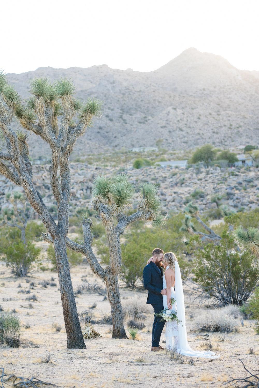 sacred_sands_joshua_tree_wedding_0142.JPG