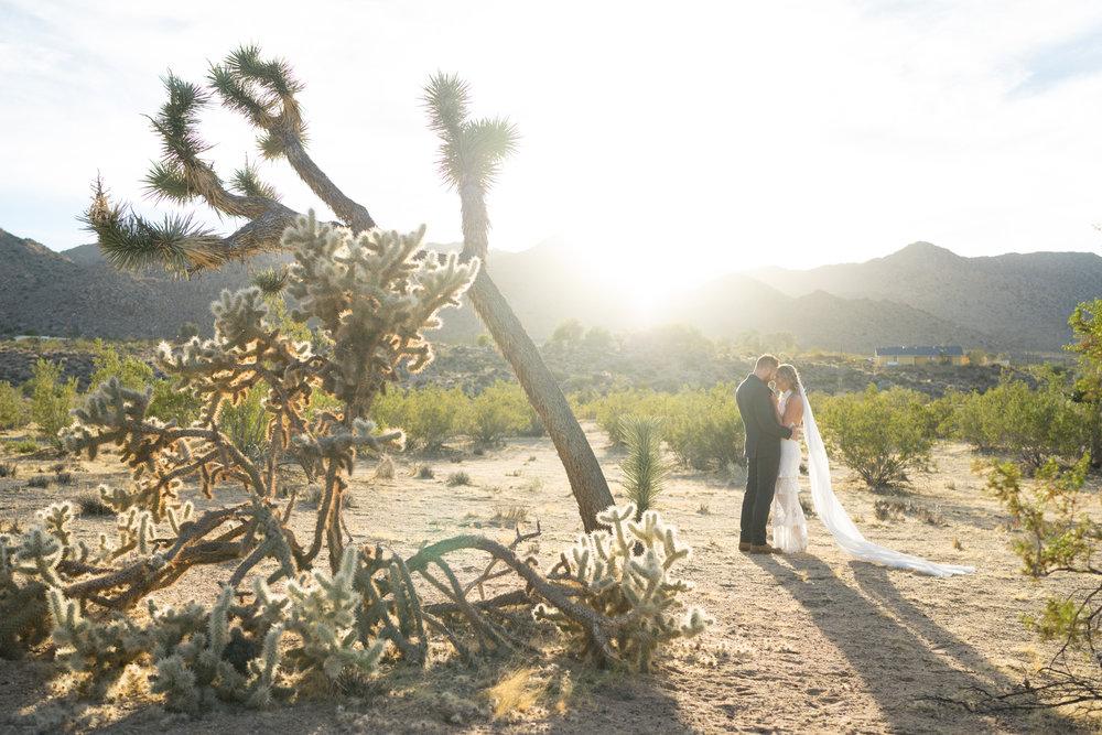 sacred_sands_joshua_tree_wedding_0152.JPG