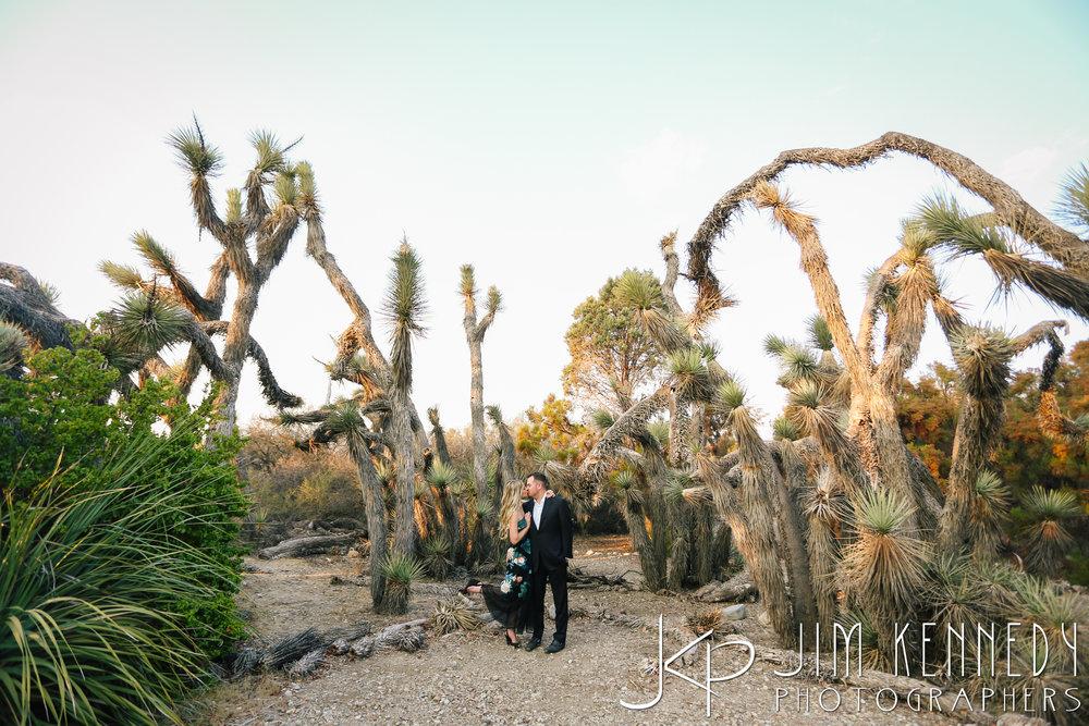 Rancho-Santa-Ana-Botanic-Garden-Engagement_0026.JPG