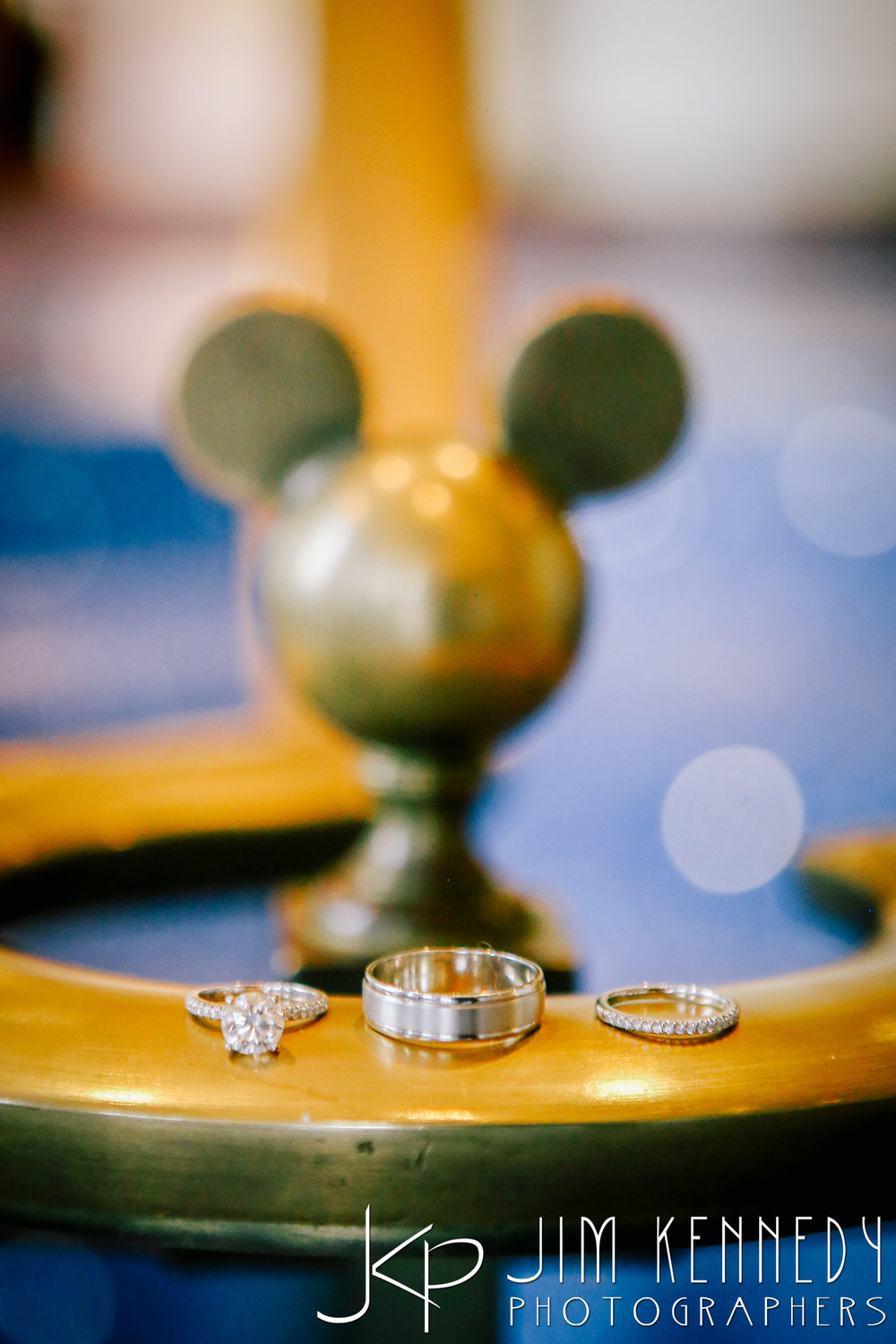 Disney-Fairytale-Wedding-0001.JPG