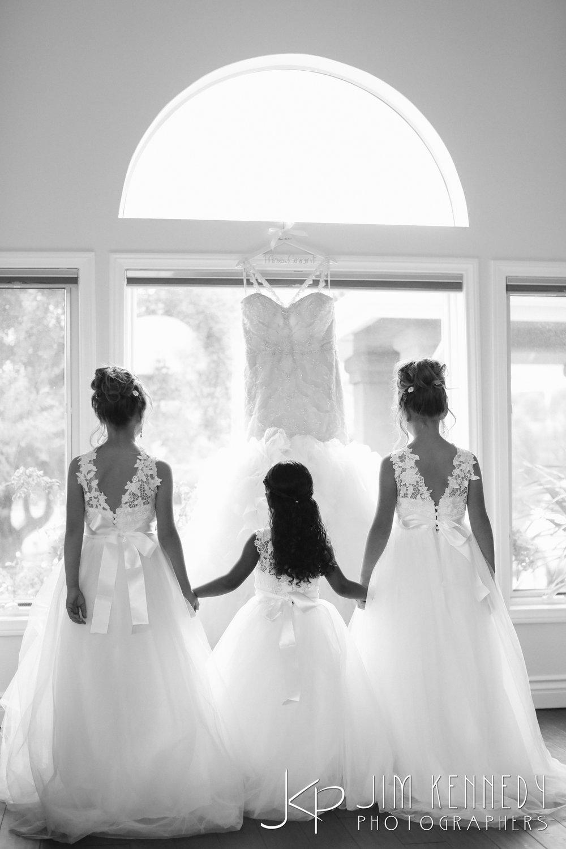 monarch_beach_wedding-0391.jpg