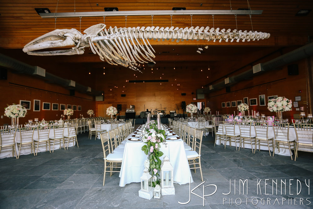 Ocean-Institute-Wedding-0188.JPG