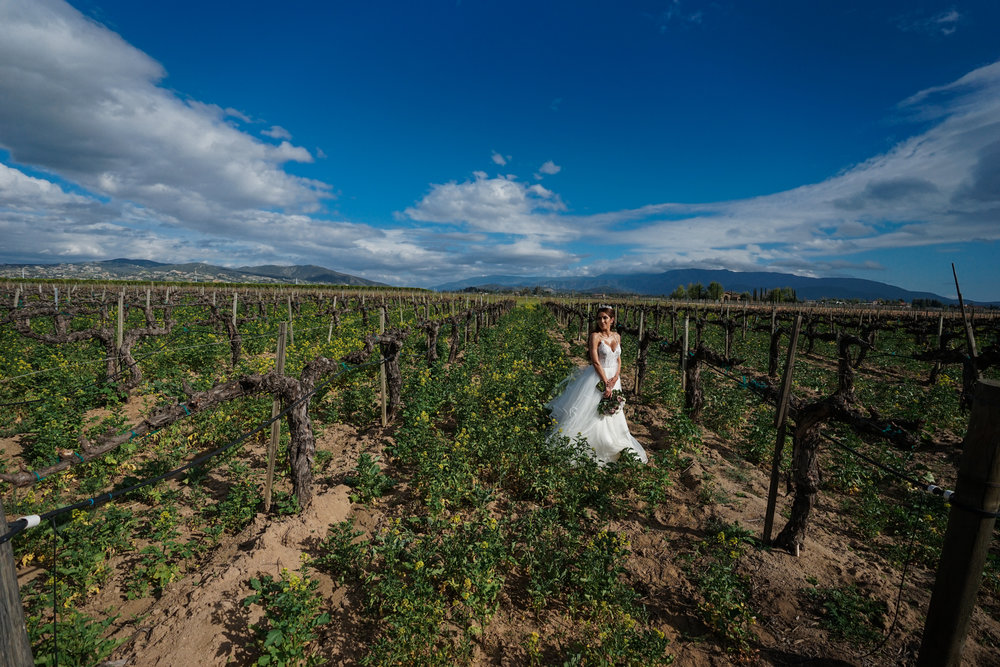 ponte_winery_wedding_temecula_0095.JPG