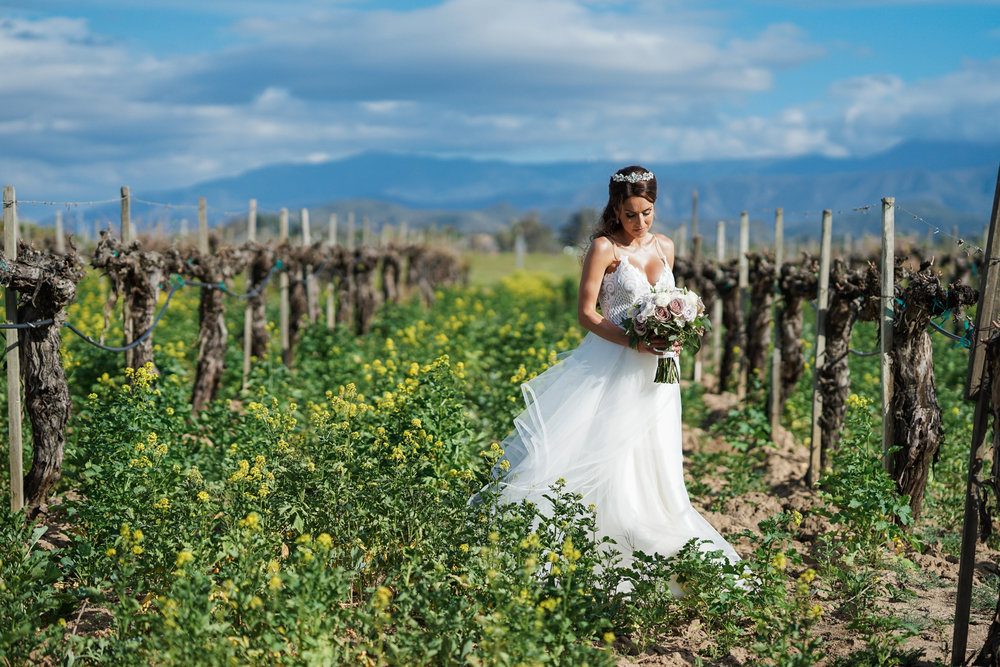 ponte_winery_wedding_temecula_0096.JPG