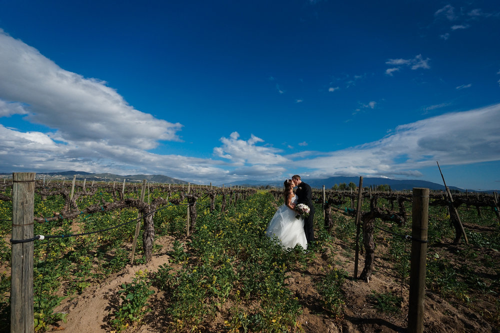 ponte_winery_wedding_temecula_0097.JPG