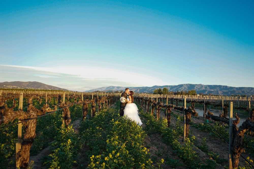 ponte_winery_wedding_temecula_0113.JPG