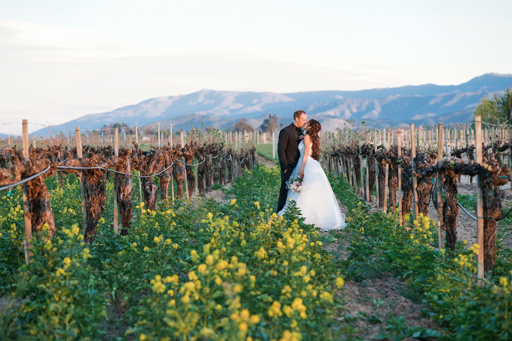 ponte_winery_wedding_temecula_0125.JPG