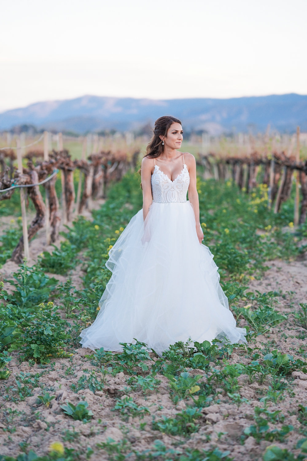 ponte_winery_wedding_temecula_0127.JPG