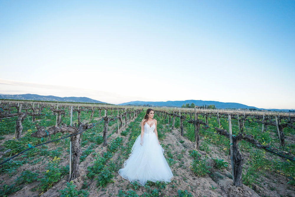 ponte_winery_wedding_temecula_0132.JPG