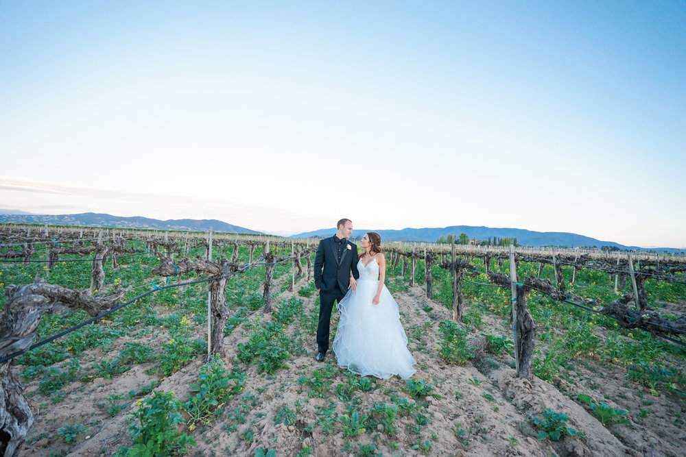 ponte_winery_wedding_temecula_0135.JPG