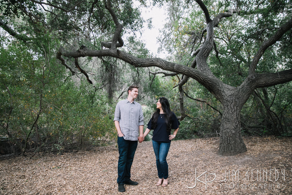 oak_canyon_engagement-0938.jpg