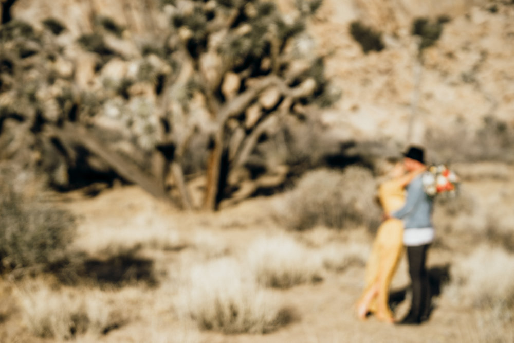 joshue-tree-engagement-session-alana_0058.JPG