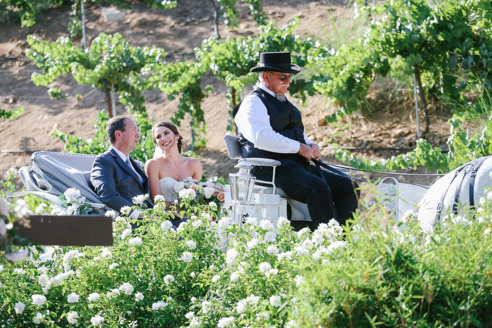 Serendipity-Gardens-Wedding-0065.JPG
