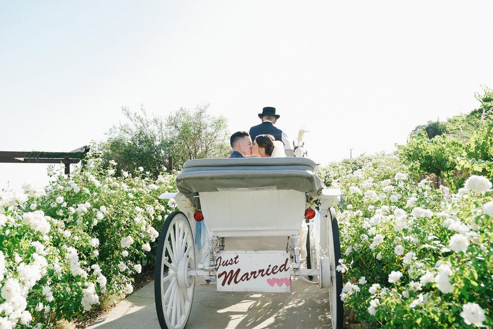 Serendipity-Gardens-Wedding-0087.JPG