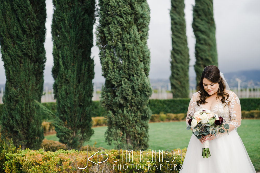 ponte-winery-wedding-jackie_0068.JPG