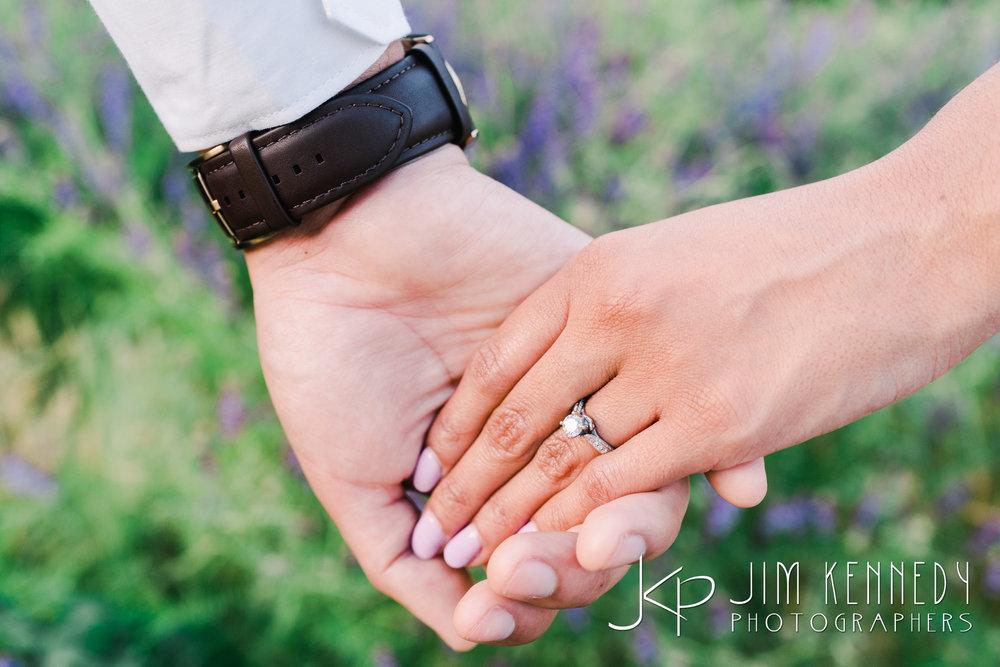 orange-county-engagement-photos-39.JPG