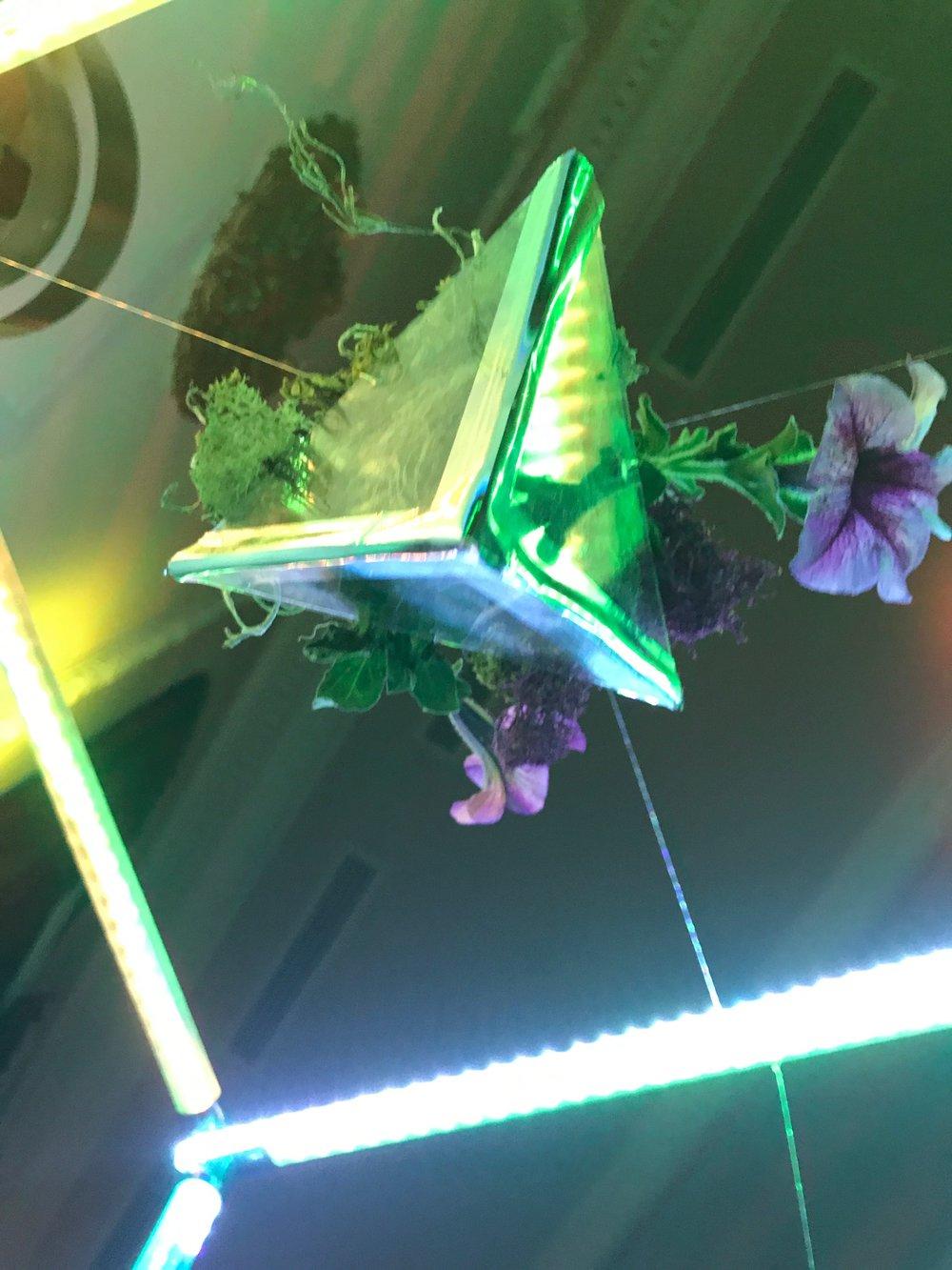 sonicgarden-image1.JPG