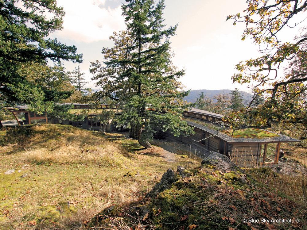 Oak Grove House blending with hillside