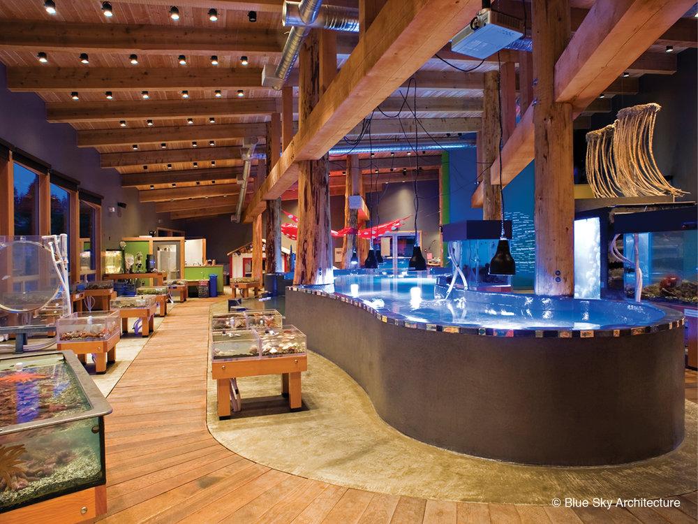 Ucluelet Aquarium's wood rafter ceiling