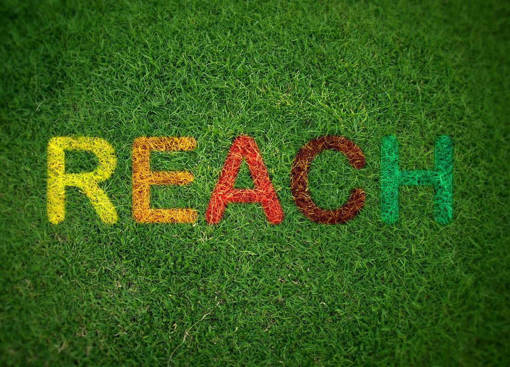 Reach Grass Signage.jpg