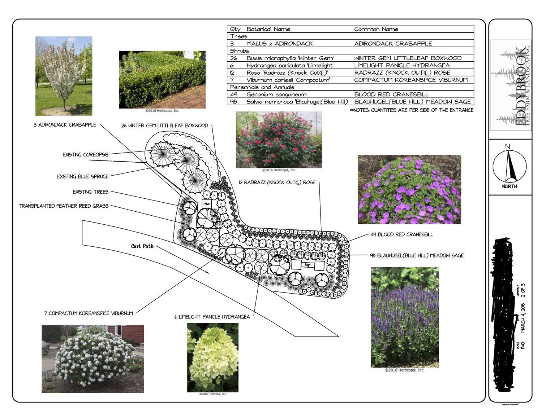 Landscape Design Process Step By Step Eddybrook Tree Farm And