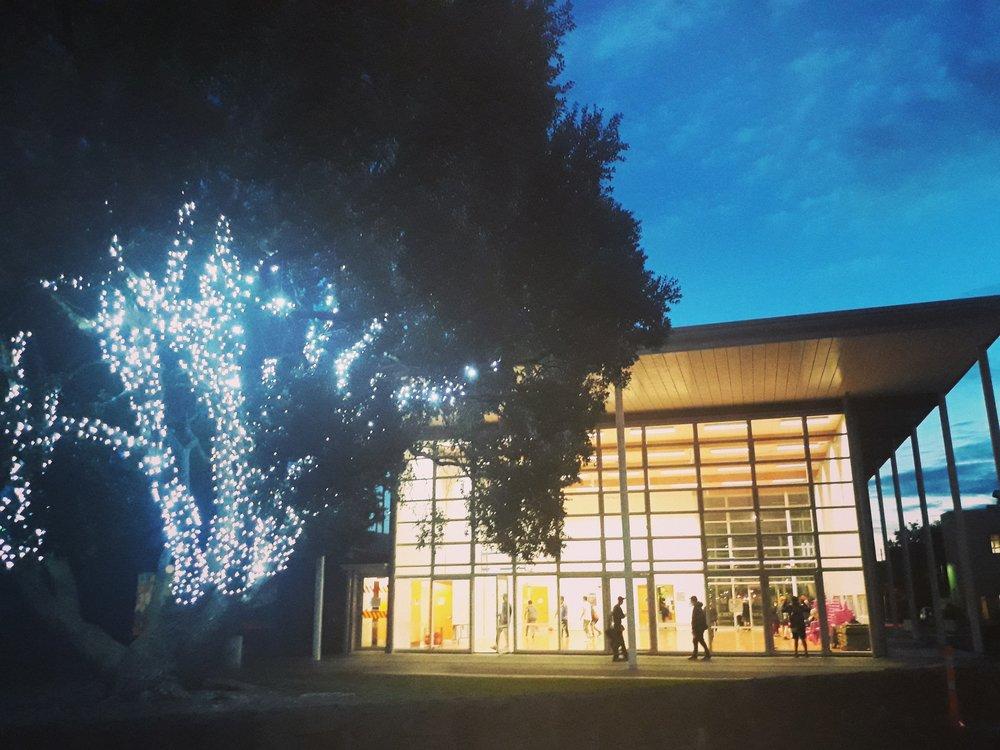 Fairy lights 3.jpg