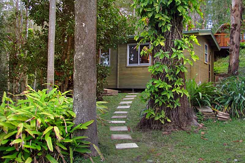 mount-warning-bed-breakfast-retreat-accommodation-murwillumbah-uki-wollumbin-forest-cabin