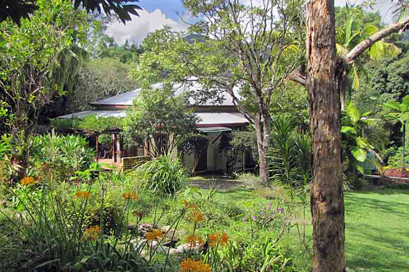 mount-warning-bed-breakfast-retreat-accommodation-murwillumbah-uki-wollumbin-rentals