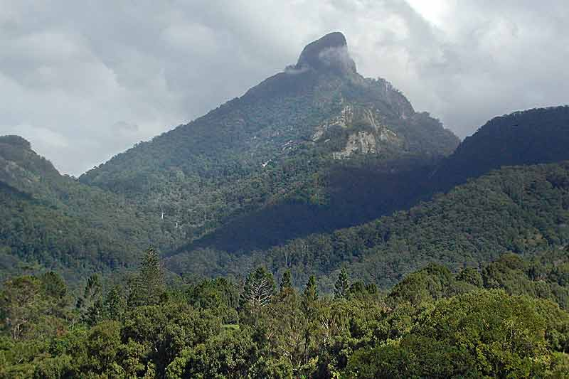 mt-warning-area-3.jpg