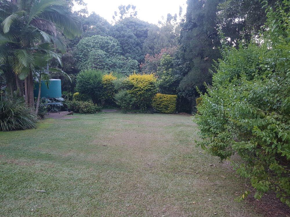 View from rose garden across lawn.jpg