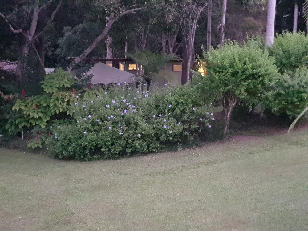 View Garden Kitchen night from rear verandah.jpg