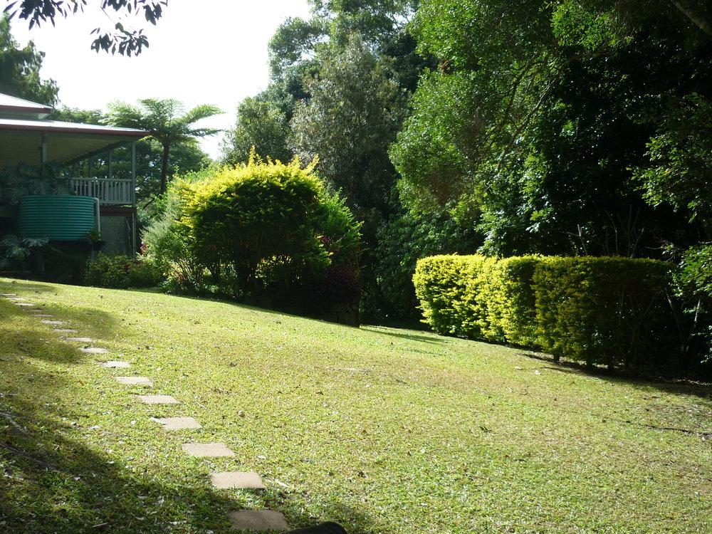 Rear Lawn from Yurt.JPG