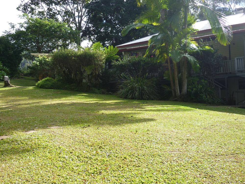Rear lawn from Hedges.JPG