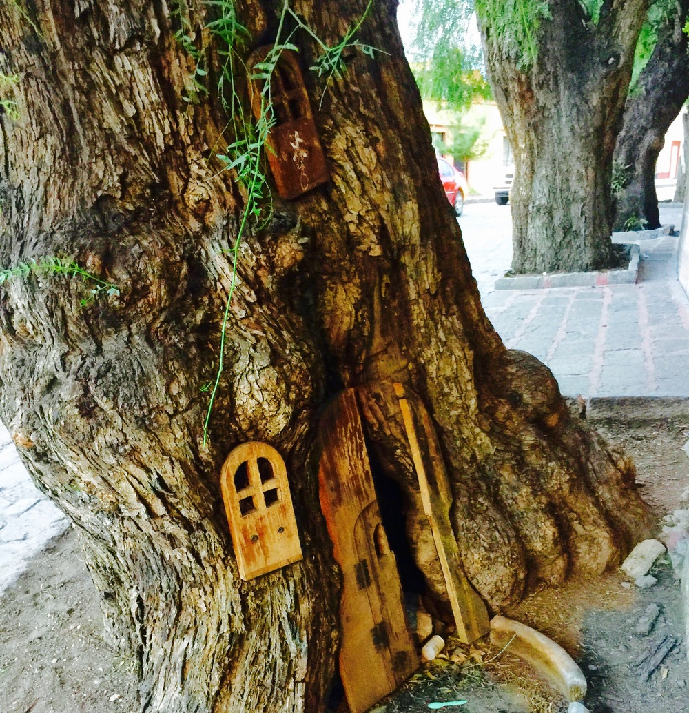 A little tree, with a little door, with another little door, that I get to pass daily in Guadelupe, an artist village full of families and great local arts and food.