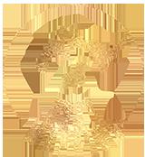 EBM_stampB_gold_small.png