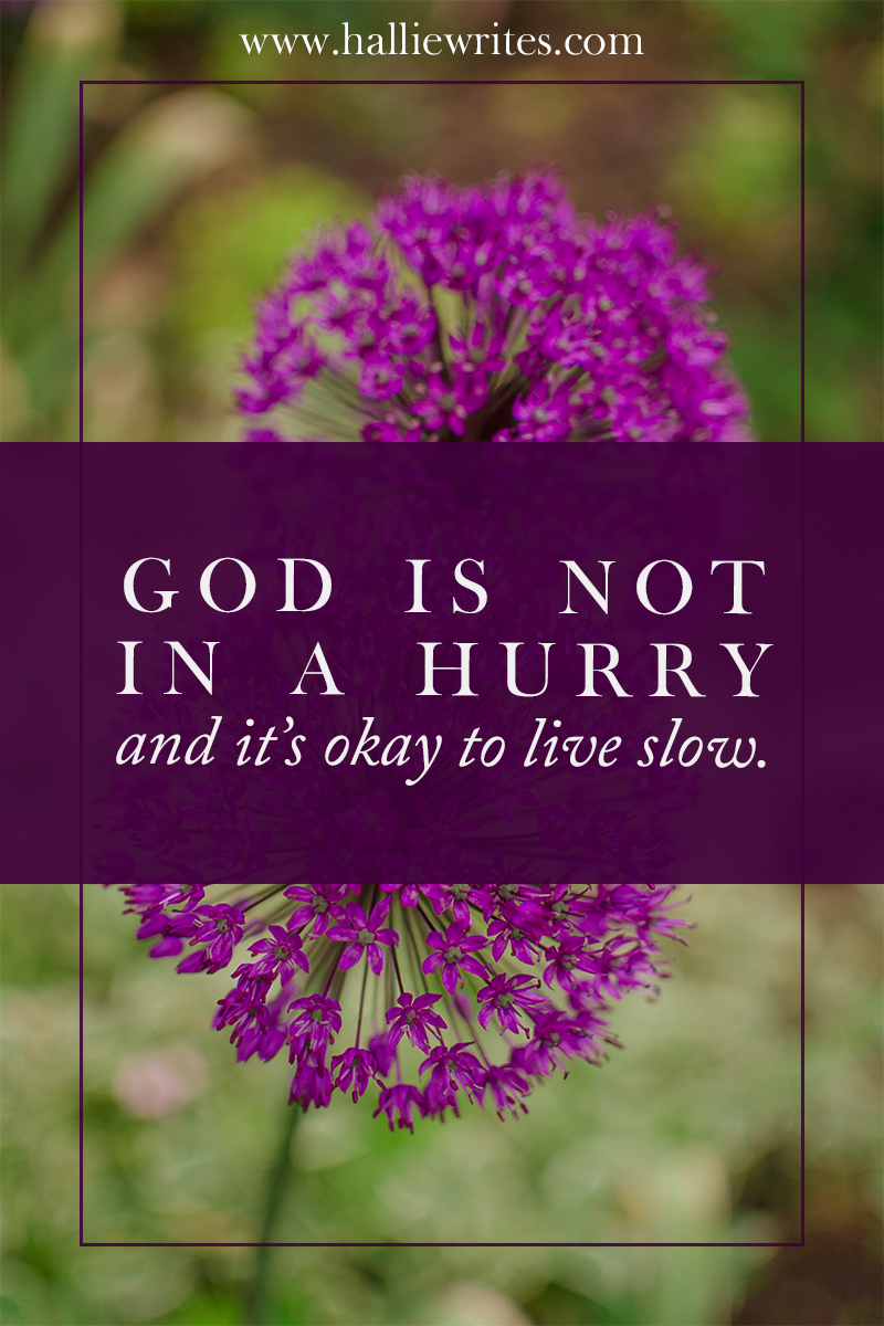 God is not in a hurry and it's okay to live slow.