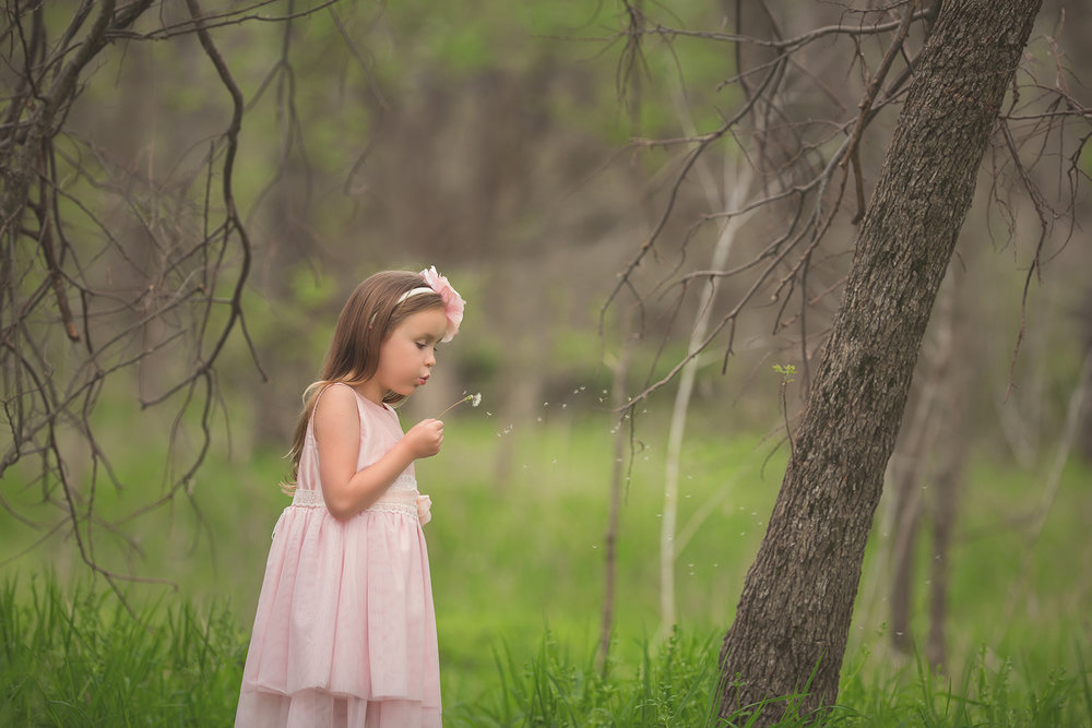 seven year old girl in pink dress blowing a dandelion. She has long red hair. Standing a meadow of green grass in spring time