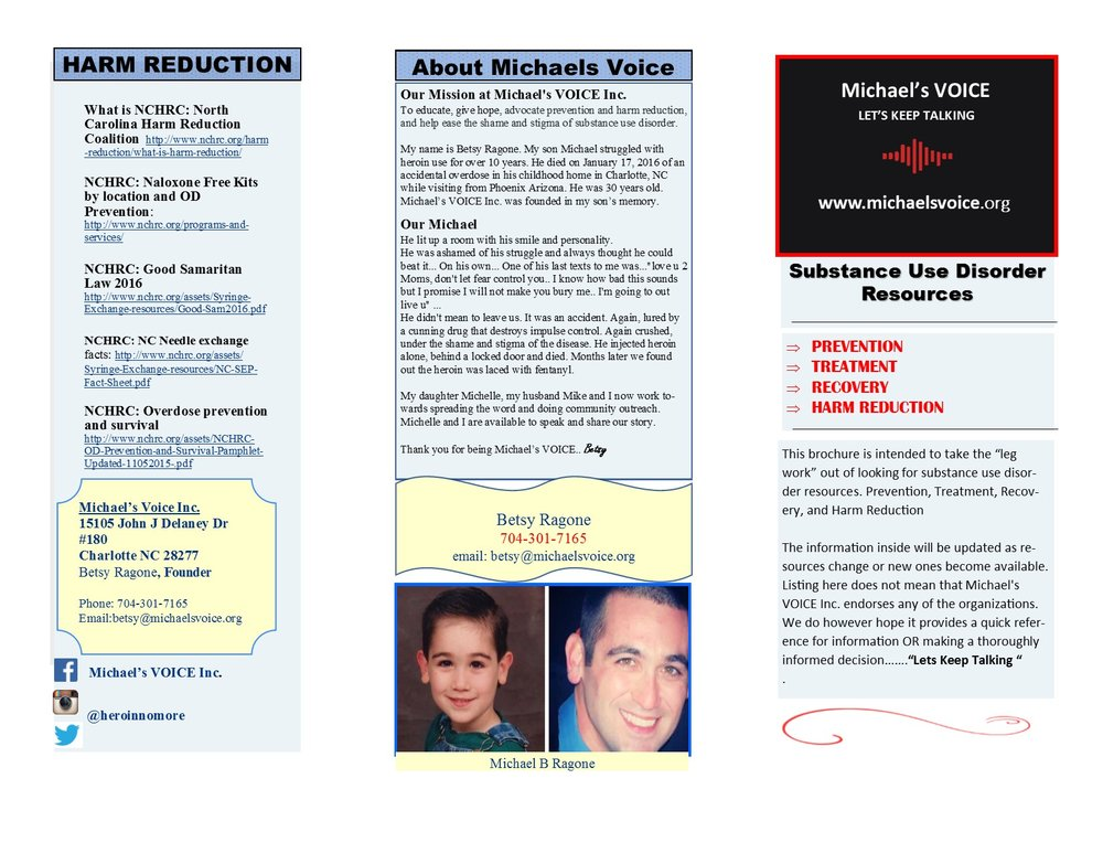 Michaels VOICE BROCHURE (Page 2).jpg