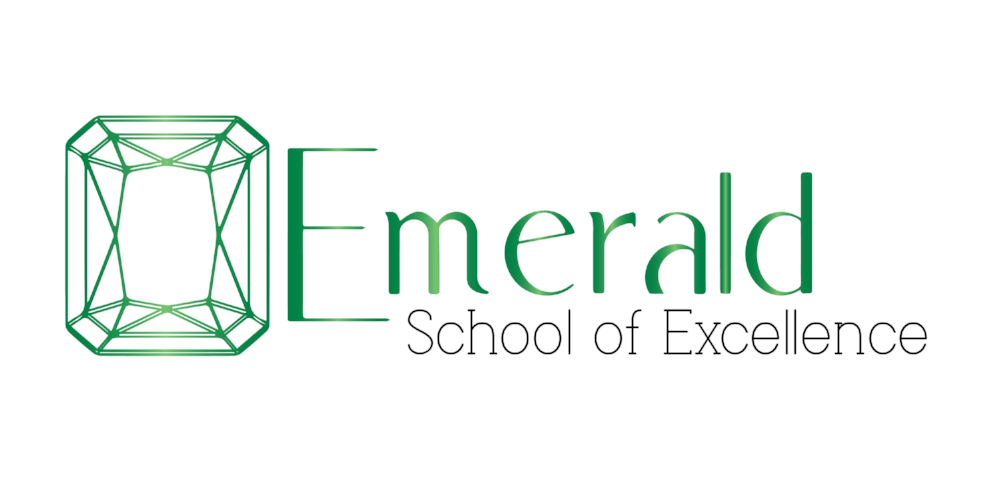 EMERALD SCHOOL OF EXCELLENCE: Our mission is to serve high school students in recovery from substance use disorder. The school's focus is educating students through faith, fitness, and the great outdoors. We are community service driven and provide peer to peer support on a daily basis. We value after school and weekend family activities in order to build a culture centered around honesty and trust.