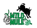 WildMule1.jpg