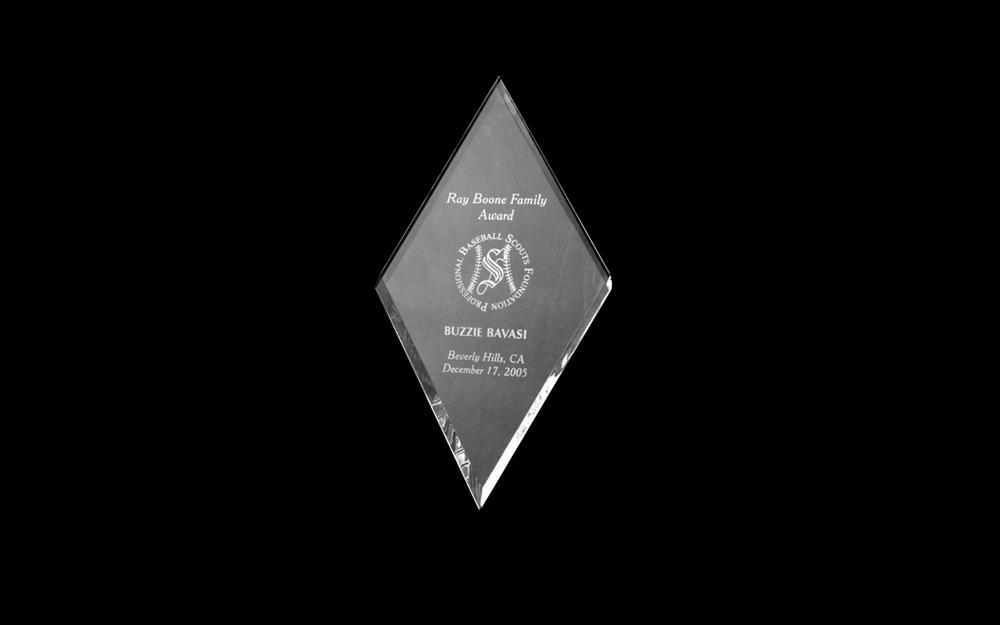 Awarded the Ray Boone Baseball Family Award