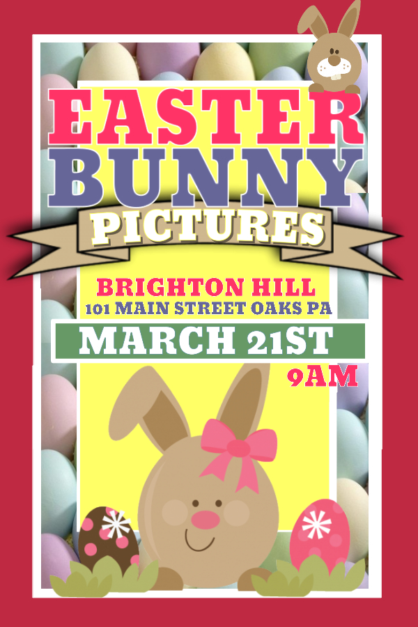 Easter Rabbit Poster Design
