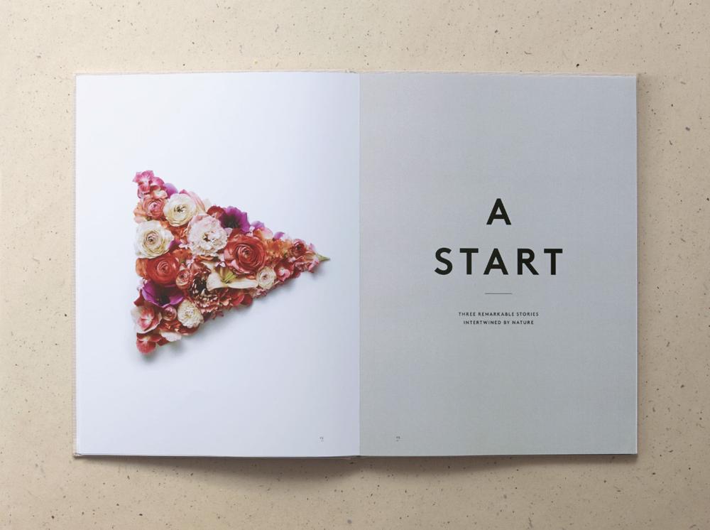 A start.PNG
